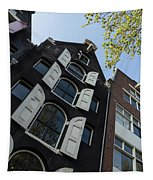 Amsterdam Spring - Arched Windows And Shutters - Right Tapestry