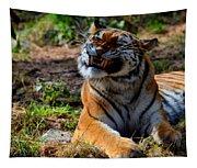 Amur Tiger 6 Tapestry