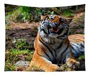 Amur Tiger 7 Tapestry