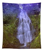An Angel In The Falls  Tapestry