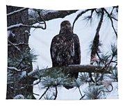 An Eagle Gazing Through Snowfall Tapestry