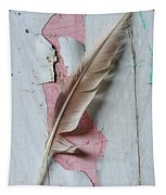 An Old Door And Feather Tapestry