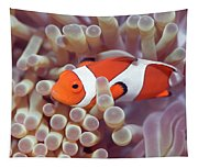 Anemone And Clown-fish Tapestry