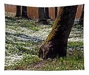 Anemone Forest Tapestry