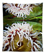 Anenome Reflection Tapestry