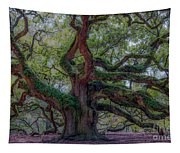 Angel Oak Tree Deeply Rooted History Tapestry