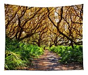 Angel Oaks In Sunshine Tapestry