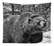 Angry Bear Black And White Tapestry