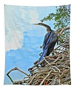 Anhinga In The Clouds Tapestry