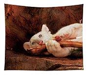 Animal - Cat - My Chew Toy Tapestry
