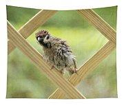 Animal Children Tapestry