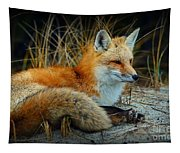 Animal - The Alert Fox  Tapestry
