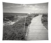 Another Asilomar Beach Boardwalk Black And White Tapestry