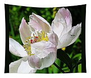 Ant On Peony Tapestry