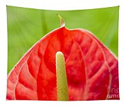 Anthurium Close-up Tapestry
