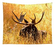 Antlers In The Golden Grass Tapestry