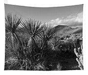 Anza-borrego Yuccas Tapestry