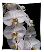 Aphrodite - White Orchid Tapestry