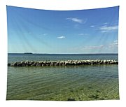 Apollo Beach Florida Tapestry