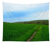 Appalachian Trail In Northern Maryland Tapestry