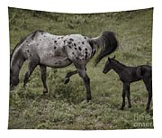 Appaloosa And Baby Tapestry