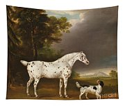 Appaloosa Horse And Spaniel Tapestry