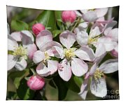 Apple Blossom Time Tapestry