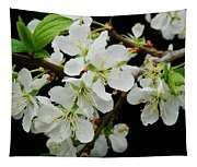 Apple Blossoms 3 Tapestry