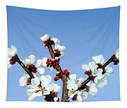 Apricot Blossoms Tapestry