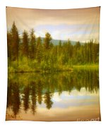 Apricot Reflections Tapestry