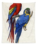 Aracangua And Blue And Yellow Macaw Tapestry