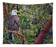 Arbutus Eagle Tapestry