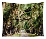 Arch Of Oaks - Evergreen Plantation Tapestry