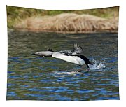 Arctic Loon Take Off Tapestry
