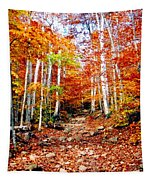 Arethusa Falls Trail Tapestry