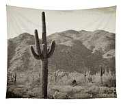Arizona Desert Tapestry