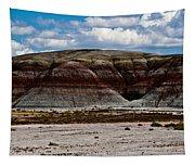 Arizona's Painted Desert #3 Tapestry