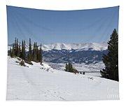 Arkansas Valley From Mount Elbert Colorado In Winter Tapestry