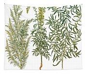 Artemisiae & Reseda Tapestry