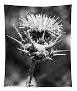 Artichoke Thistle Bw Tapestry