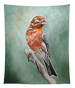 Male House Finch Tapestry