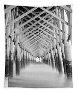 As The Water Fades Grayscale Tapestry