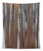 Aspen Abstract Vertical Tapestry