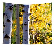 Aspen Color Tapestry