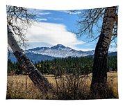 Aspen Frame Fall Tapestry