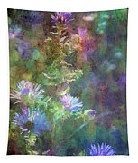 Aster 5077 Idp_2 Tapestry