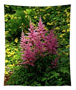Astillbe In Light And Shadow Tapestry