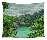 At Moo Koh Angthong Marine Park Tapestry