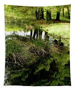 At The Edge Of The Forest Pond. Tapestry