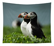 Atlantic Puffins Tapestry